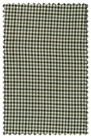 Baroni Gray Check Sportcoat #3736-1